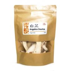 High Quality Angelica Daurica Bai Zhi